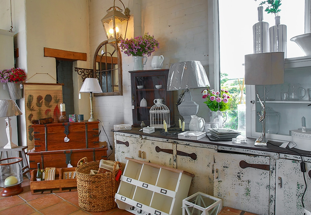 At home with the Lavender House Mob! - Abersoch Life